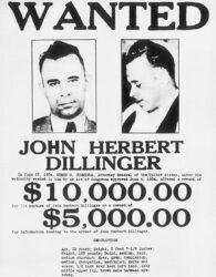 Dillinger-Laim-3_390x500