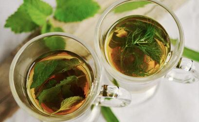 München-Vorteil, Tea & More, Teehandel